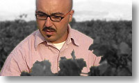 Nino Barraco in his vineyard
