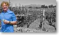 Mick Hucknall in his vineyard